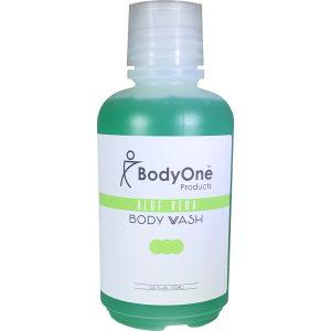 Aloe Vera Body Wash 18 oz
